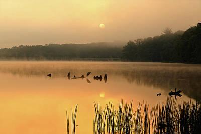 Foggy Sunrise At The Lake Art Print by Delmas Lehman
