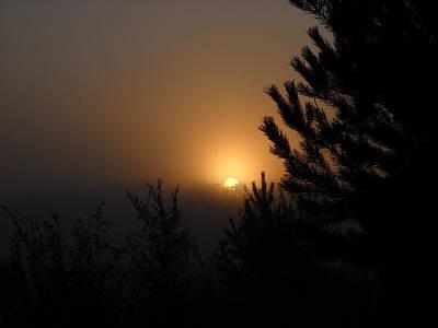 Photograph - Foggy Sunrise Behind Trees by Kent Lorentzen