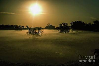 Photograph - Foggy Sunrise by Diana Mary Sharpton
