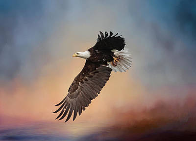 Photograph - Foggy Sunrise Eagle by Wes and Dotty Weber
