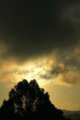 Photograph - Foggy Sunrise In El Sobrante Two by Joyce Dickens