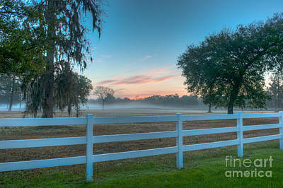 Photograph - Foggy Sunrise Off Highway 41 by Dale Powell