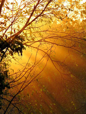 Photograph - Foggy Sunset by Judy Johnson