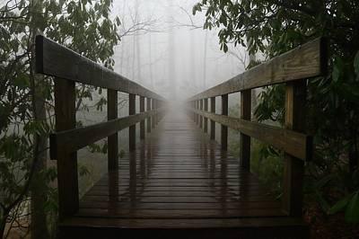 Photograph - Foggy Tanawha Trail by Amanda Quinzi