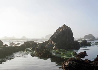 Photograph - Foggy Tide Pools by Brent Dolliver