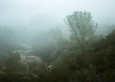 Photograph - Foggy Torrey Sandstone Canyon by Alexander Kunz