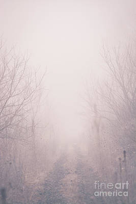 Photograph - Foggy Trail by Cheryl Baxter