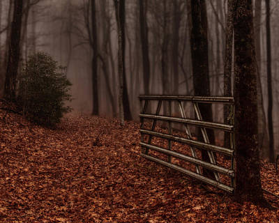 Photograph - Foggy Trail by Kevin Senter
