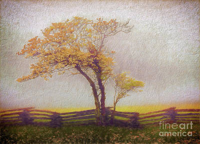Groundhog Digital Art - Foggy Tree And Fence In The Blue Ridge Ap by Dan Carmichael