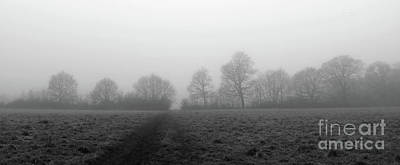 Photograph - Foggy Treeline by Julia Gavin