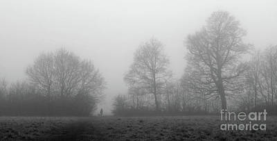 Photograph - Foggy Trees by Julia Gavin