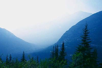 Art Print featuring the photograph Foggy Valley by Jack G  Brauer