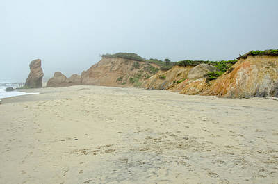 Photograph - Foggy Vineyard Beach by Donna Doherty