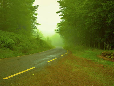 Photograph - Foggy Way.  by Leif Sohlman