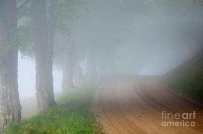 Photograph - Foggy Way by Sandra Silva