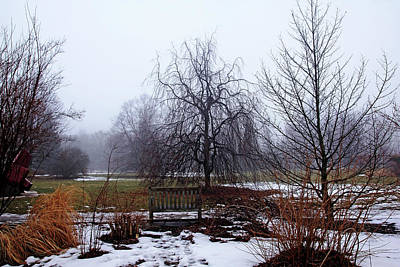 Photograph - Foggy Winter Day by Debbie Oppermann