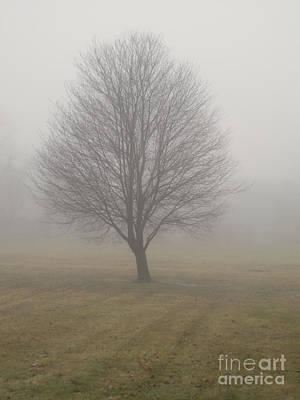 Foggy Winter Morn Print by Ann Horn