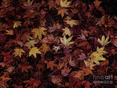 Foil Leaves Art Print by Robert Ball
