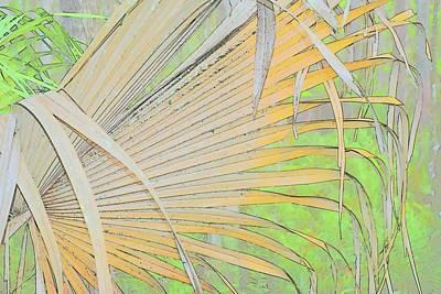 Photograph - Fold Over Palm by Florene Welebny