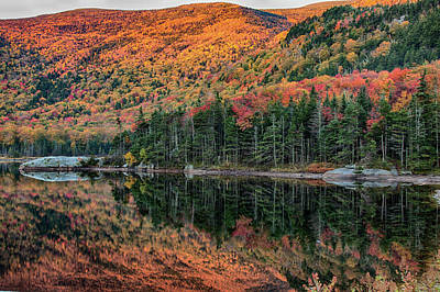Photograph - foliage at dawn on Beaver pond by Jeff Folger