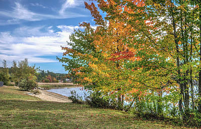 Photograph - Foliage Beside The Lake by Jane Luxton