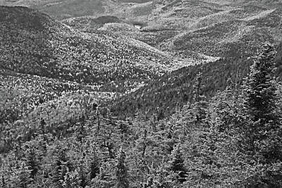 Photograph - Foliage Covered Mountainscape Keene Valley Adirondacks New York Black And White by Toby McGuire