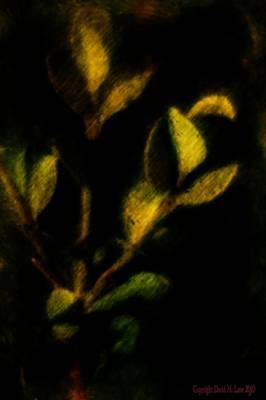 Digital Art - Foliage  by David Lane