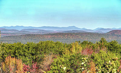 Photograph - Foliage On The Mountains by Jane Luxton