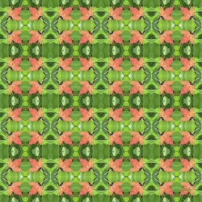 Photograph - Foliage Pattern by Barbie Corbett-Newmin