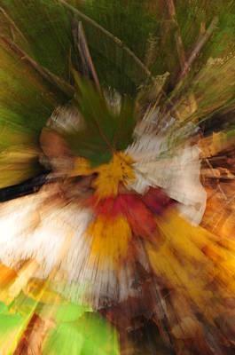 Foliage Zoom Art Print by Nancy Marshall