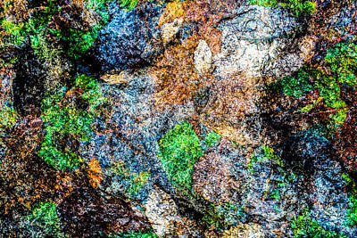 Photograph - Foliated Granite by SR Green