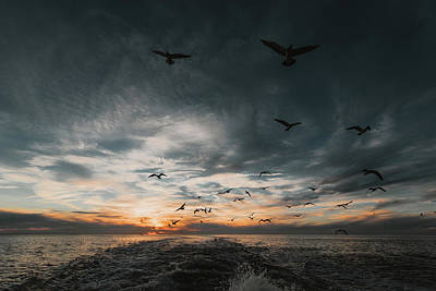 Photograph - Follow The Ferry by Jessica Nelson
