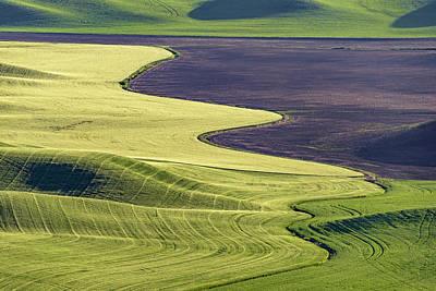 Photograph - Follow The Lines by Jon Glaser