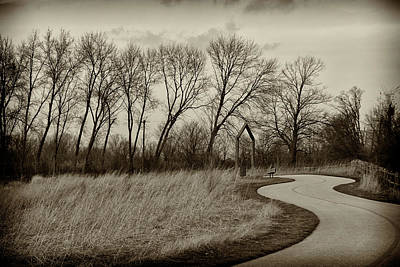 Photograph - Follow The Path by Elvira Butler