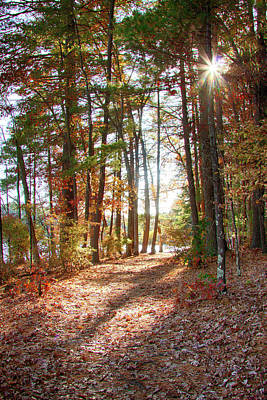 Photograph - Follow The Path by Jeff Folger