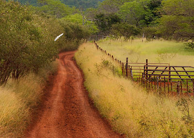 Follow The Red Dirt Road Art Print