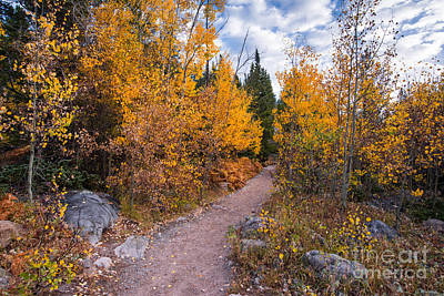 Photograph - Follow The Yellow Road - Glacier Gorge Rocky Mountain National Park - Estes Park Colorado by Silvio Ligutti