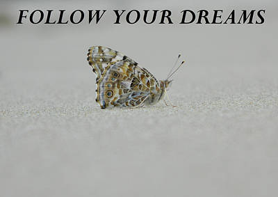 Anti-bullying Photograph - Follow Your Dreams - Blk by Gallery Of Hope