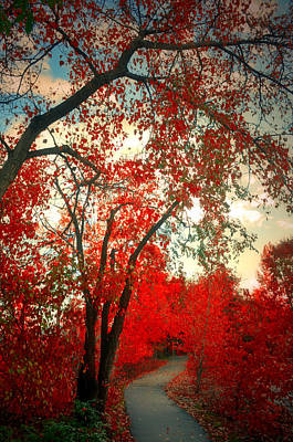 Photograph - Following The Red Path Into The Morning by Tara Turner