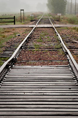 Photograph - Following The Tracks by Monte Stevens