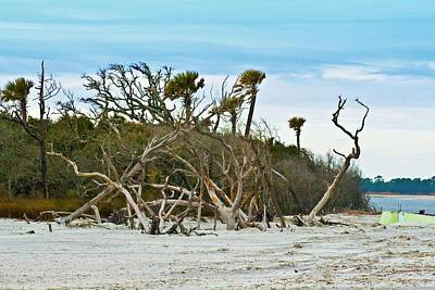 Photograph - Folly Beach by Bill Barber