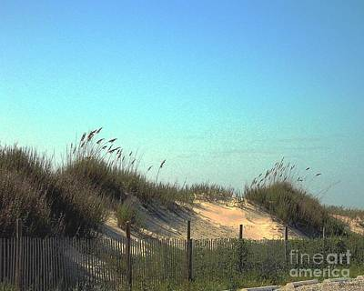 Folly Beach Sc Dunes Art Print