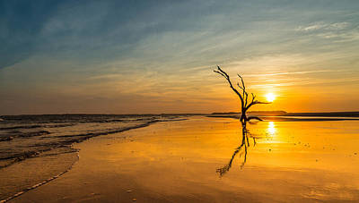 Photograph - Folly Beach Skeleton Tree At Sunset - Folly Beach Sc by Donnie Whitaker