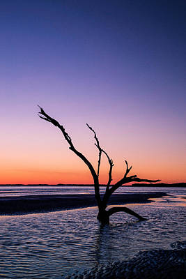 Folly Photograph - Folly Beach State Park by Todd Wise