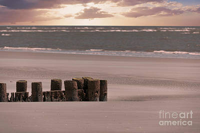 Photograph - Folly Beach Sunrise by Dale Powell