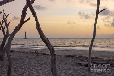 Photograph - Folly Beach Sunrise by Jennifer White