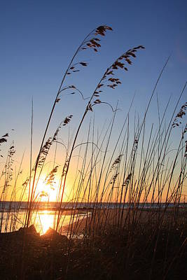 Photograph - Folly Beach Sunrise Sc by Mountains to the Sea Photo