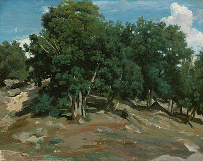Realistic Painting - Fontainebleau, Oak Trees At Bas-breau by Camille Corot