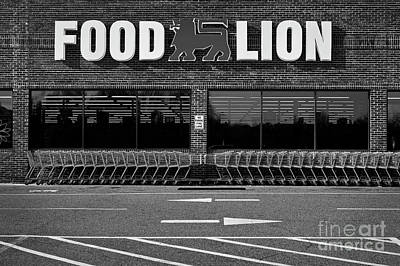 Photograph - Food Lion by Patrick M Lynch
