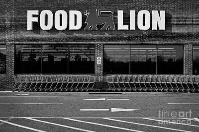 Photograph - Food Lion by Patrick M Lynch